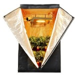 Get a Hydroponic Grow Tent for Your Indoor Gardening