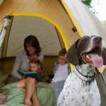 Quictent Tips for New Campers: How to Buy Your First Camping Tent?