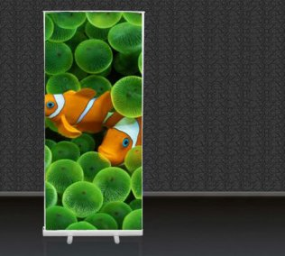 Roll-Up Banner Display Stand